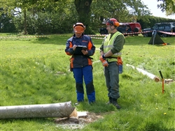 Chainsaw assessment 1